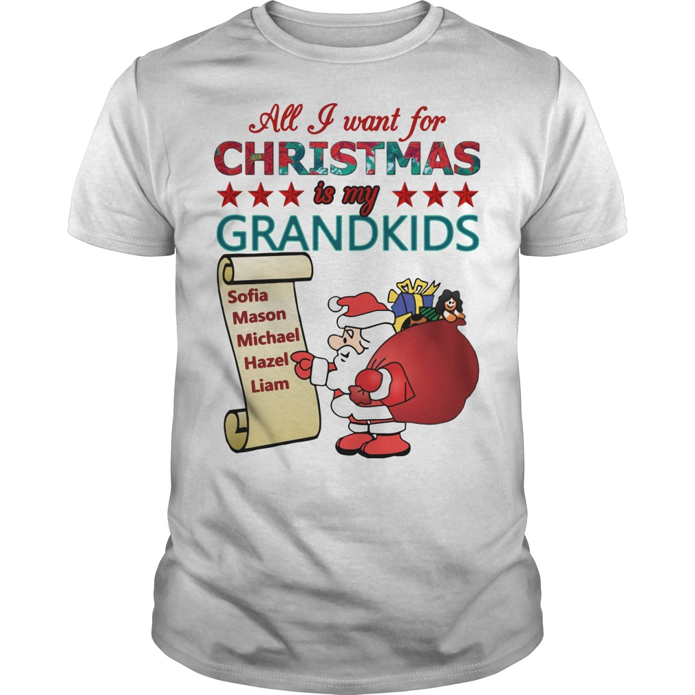 All I want for christmas is my grandkids Guys t-shirt