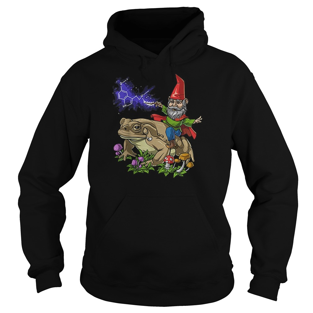 Gnome riding bufo alvarius toad chemistry witch Christmas Hoodie