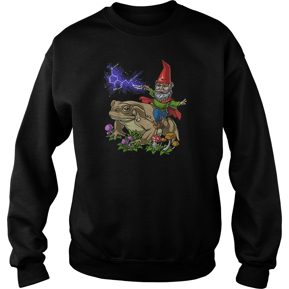 Gnome riding bufo alvarius toad chemistry witch Christmas Sweater
